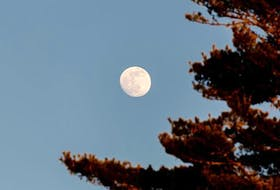 """Last Tuesday, as the """"almost"""" Full Wolf Moon rose over Chester, N.S., its bright light caught Barry Burgess' attention. There's no word on whether Barry heard the haunting howls of mid-winter wolves when he took this lovely photo."""