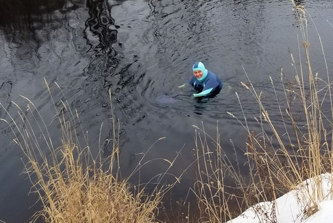 Meet Dianne Looker, a long time Women of Wolfville member who tries to swim every day in the canal in Gaspereau, N.S. 