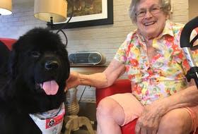 Four-year-old Newfoundland dog Darcie mingles with Eleanor Aalders at the Grand View Manor in Berwick.
