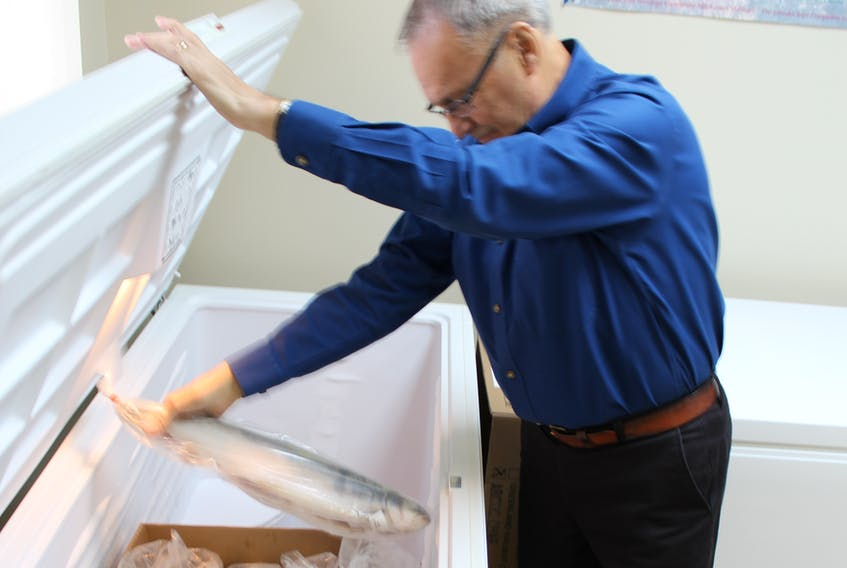 Gary Mitchell, chair of the NunaKatiget Inuit Community Corporation checks out the stock of char in one of the deep freezes of the Max Winters Memorial Community Freezer in Happy-Valley Goose Bay.