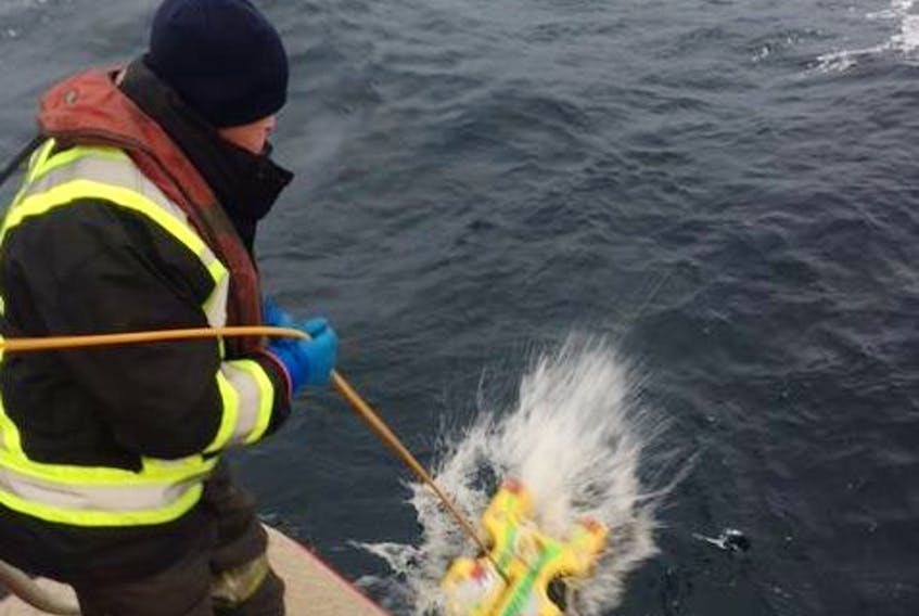 On Wednesday, Nov. 29, Canadian Coast Guard Environmental Response team operating from a coast guard pollution response vessel, lowered a remotely-operated vehicle (ROV) into the water on its way to survey the hull of the sunken vessel the Manolis L.