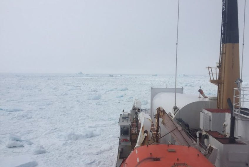 The Canadian Coast Guard is asking operator to keep vessels ashor e after  effecting several search and rescue operations in Notre Dame  Bay over the  last 72 hours. Pack ice is creating unsafe conditions for all  vessels.
