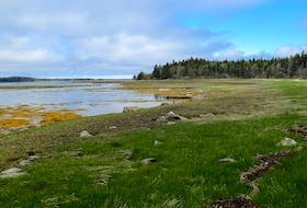 Three parcels of land, totalling 48 hectares (117 acres) at Roberts Island, have been purchased by the Nature Conservancy of Canada.