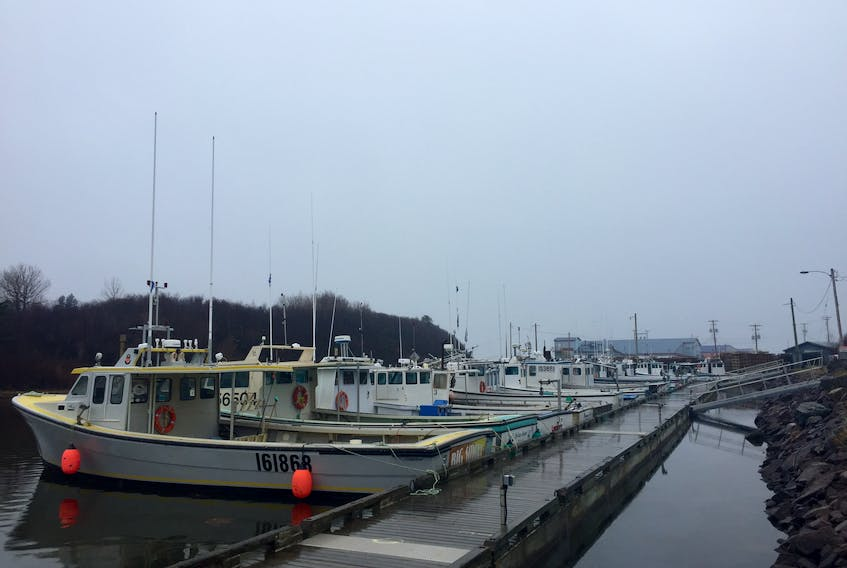 32 fishing boats line the floating docks at Lismore Wharf one week ahead of setting day on April 29.
