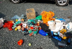 Garbage collected from 300 metres of coastline laid out on the author's driveway.