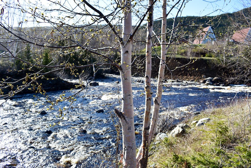 The Baie Verte salmon river has chlorine leaking into it from the town's water system. Council has applied for emergency assistance funding.