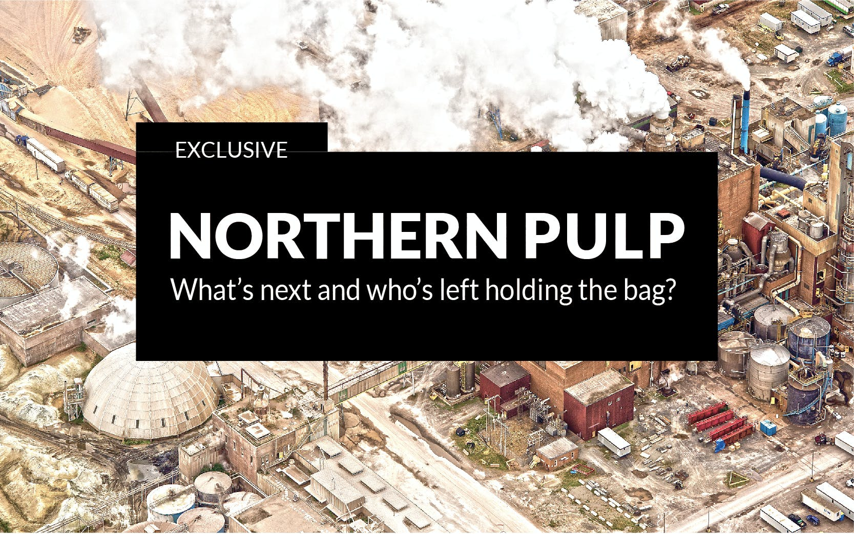 Banner for Northern Pulp series of stories published in Jan. 2019