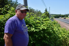 Cal Joslin stands in front of a large growth of Japanese knotweed at the end of his street, which exits onto the Trans-Canada Highway in DeSable. Michael Robar/The Guardian