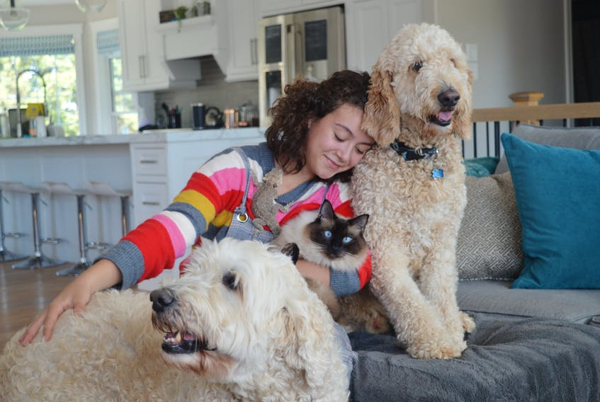 Alyssa Rix, 13, of Stratford says no home is complete unless it's full of animals. She's pictured here with two of her golden doodle dogs, one of her three cats and, if you look closely, a bearded dragon. Alyssa's passion for animals helped inspire she and her 12-year-old cousin to make bracelets and cookies, sell them and donate the money to the P.E.I. Humane Society. Dave Stewart/The Guardian