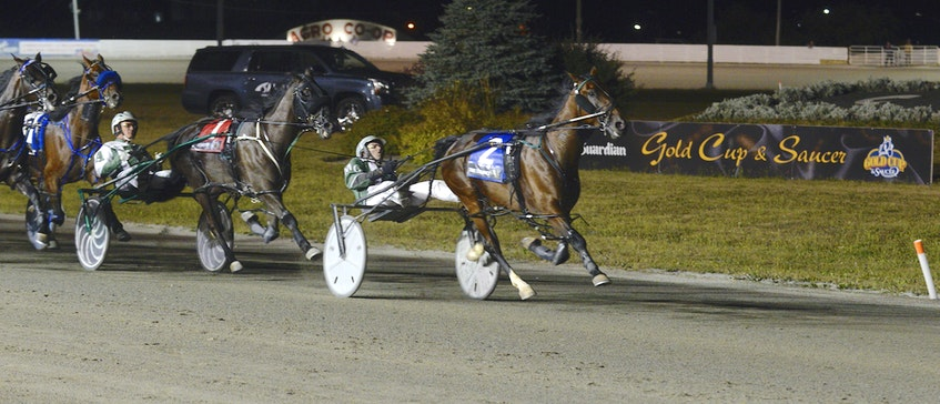 Catch me if you can. Time To Dance took the lead early and never relinquished it early Sunday morning to capture the $60,000 The Guardian Gold Cup and Saucer at Red Shores at the Charlottetown Driving Park. - Jason Malloy