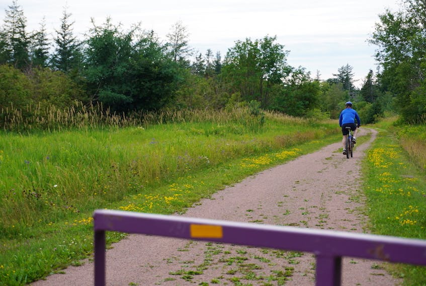 A cyclist bikes down a stretch of the Confederation Trail in Mount Stewart in this Guardian file photo. Recently, the Resort Municipality applied for funding to add more walking and biking trails to some of its own communities, including Cavendish and Stanley Bridge.