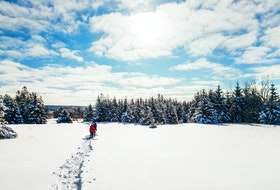 From tip to tip on the Island, there's no shortage of thrilling winter activities to enjoy, like stepping lightly over the glittering snow on snowshoes. - Photo Courtesy Tourism P.E.I.