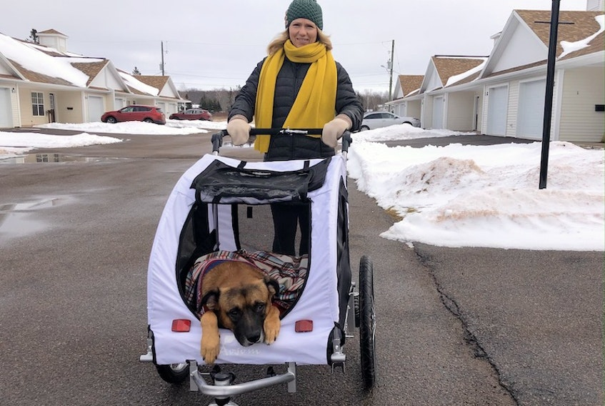 Jo-Anne Praught and her recent foster, Ritz, out for an afternoon walk in their neighbourhood.