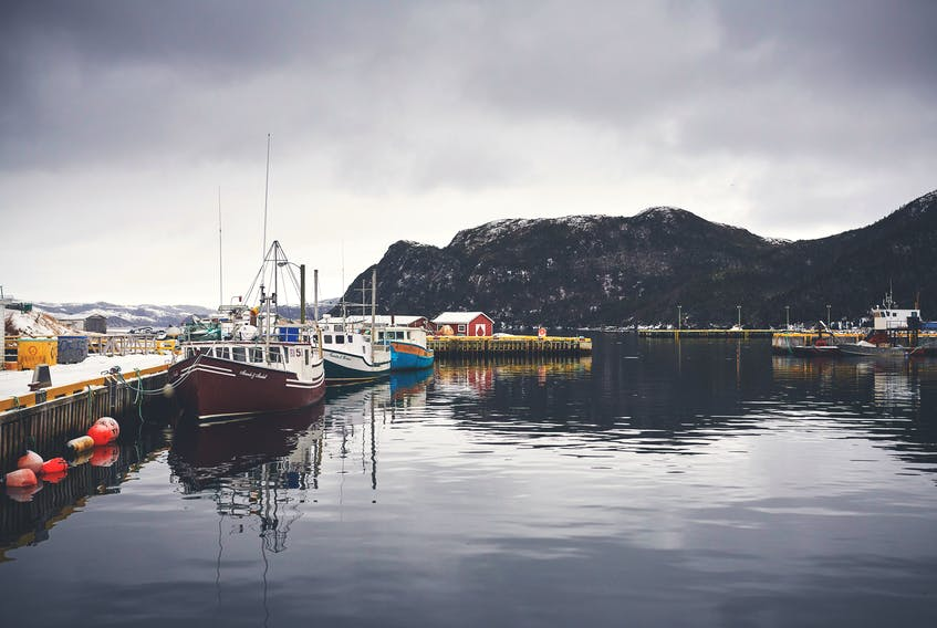 """""""We have more than 17,000 kilometres of shoreline. We're the perfect place to grow and farm seafood,"""" says Mark Lane, the Executive Director of the Newfoundland Aquaculture Industry Association (NAIA). """"The potential for sustainable growth is enormous."""" - Chris Crockwell"""
