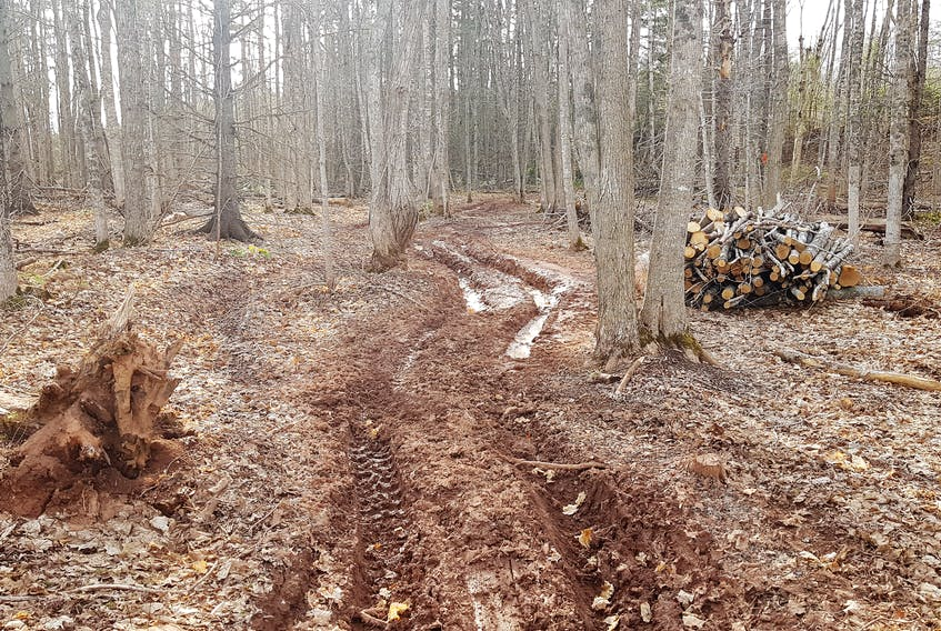 With ATV trail systems remaining closed until ground conditions harden, groups like the  East Prince Quad Trax ATV Club No. 5 are faced with the issue of some riders taking the trails and damaging private property.