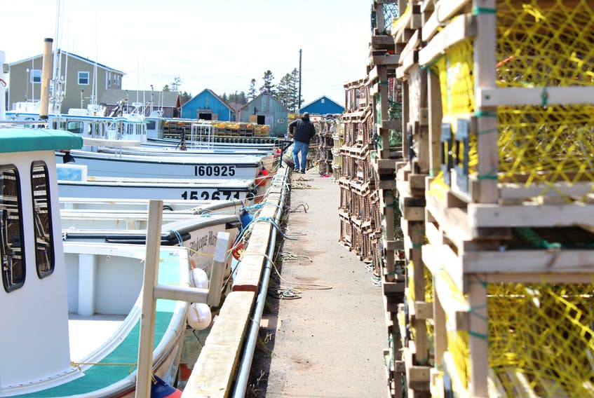 Lines of boats and lobster traps sit waiting at Malpeque Harbour for setting day, which is tentatively set for April 29.