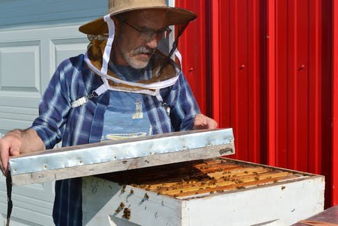 Kenneth Peters of O'Leary experienced devastating beehive losses this year. When Peters opened his hives in the spring, he discovered that 90 per cent of his bees died over the winter. Peters, who is the owner of Ken's Honey Bee Farm, feels the erratic weather is the main reason for his losses.