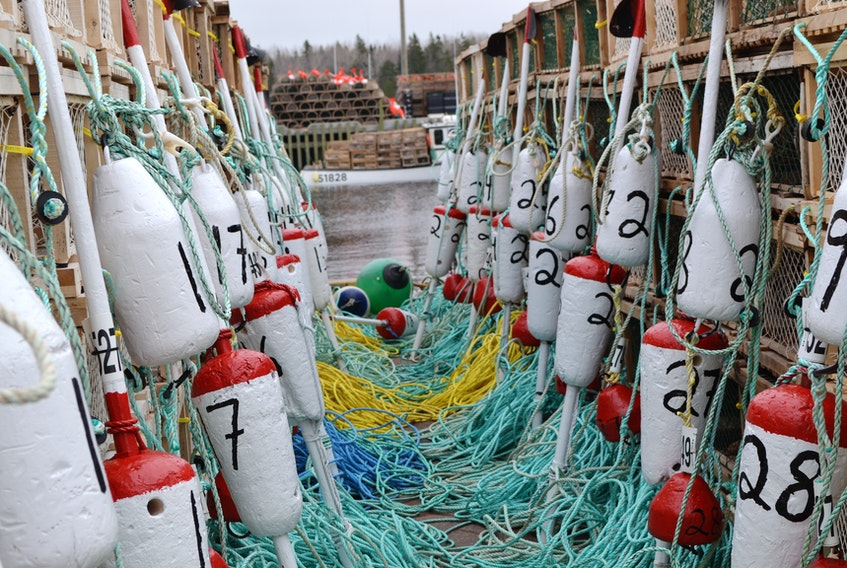 Traps, ropes and buoys provide a fitting frame for a lobster boat at Milligan's Wharf on Sunday.  The gear is all destined for the waters of Lobster Fishing Area 24.