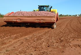 Jonathan MacLennan with a planter loaded with Prospect potato sets.