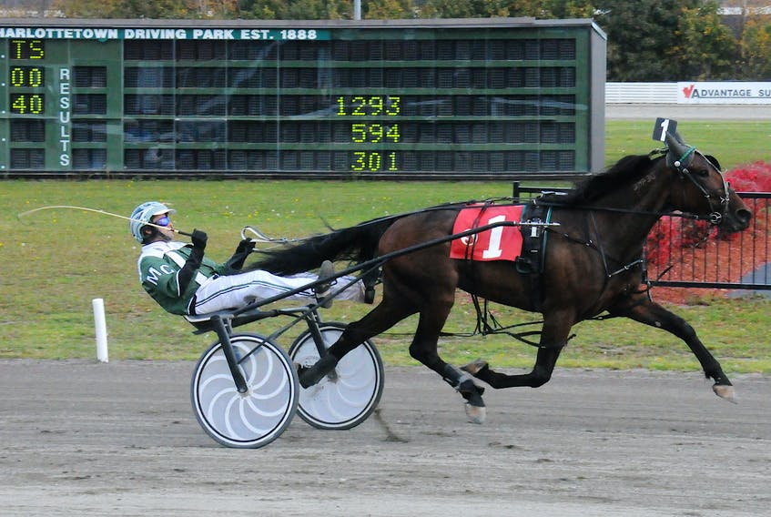 Pappy Go Go with Marc Campbell in the bike during harness racing action at Red Shores at the Charlottetown Driving Park in 2017. Gail MacDonald/Special to The Guardian