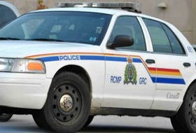 The RCMP has charged a Holyrood woman for reportedly docking puppies' tails.