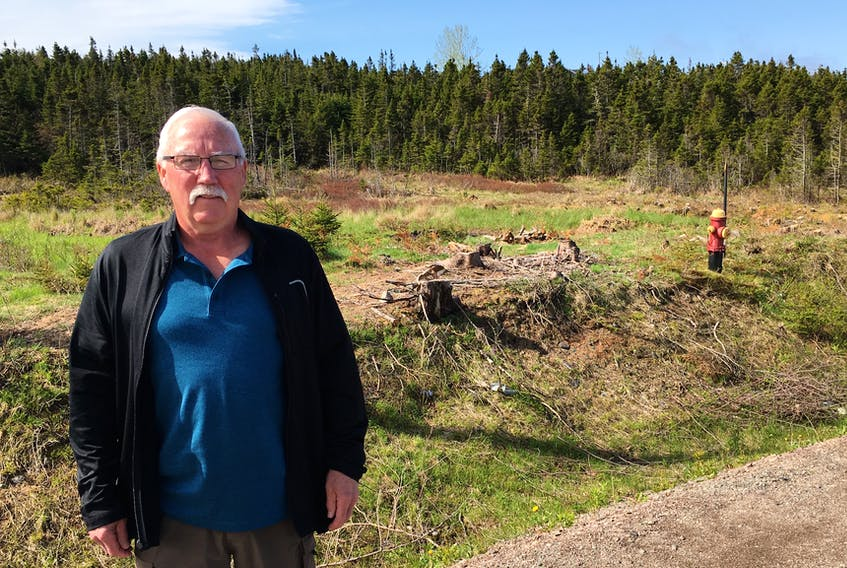 Al Lewis stands in front of the Marine Drive property he bought from the Town of Marystown in 2011. A provincial government sight distance regulation is preventing him from building a driveway to the land, thus stopping him from constructing a new home.