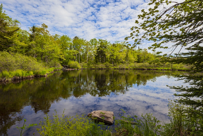Sackville River-Lewis Lake Wilderness Park was promised for protection by the Nova Scotia government in 2013, but it still has not received a legal designation. - Irwin Barrett