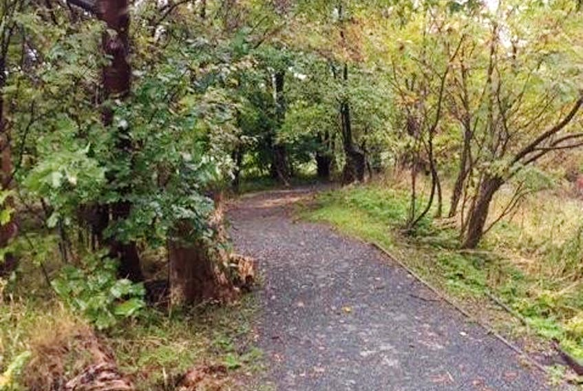 Rennies River Trail in St. John's, between Portugal Cove and Kings Bridge roads. — Robert Bishop photo