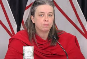 Dr. Janice Fitzgerald speaking at Wednesday's provincial COVID-19 briefing. — YouTube screengrab