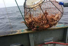 Fish species that the Atlantic Canadian industry relies upon are alreadyb feeling the effects of the changing climate.