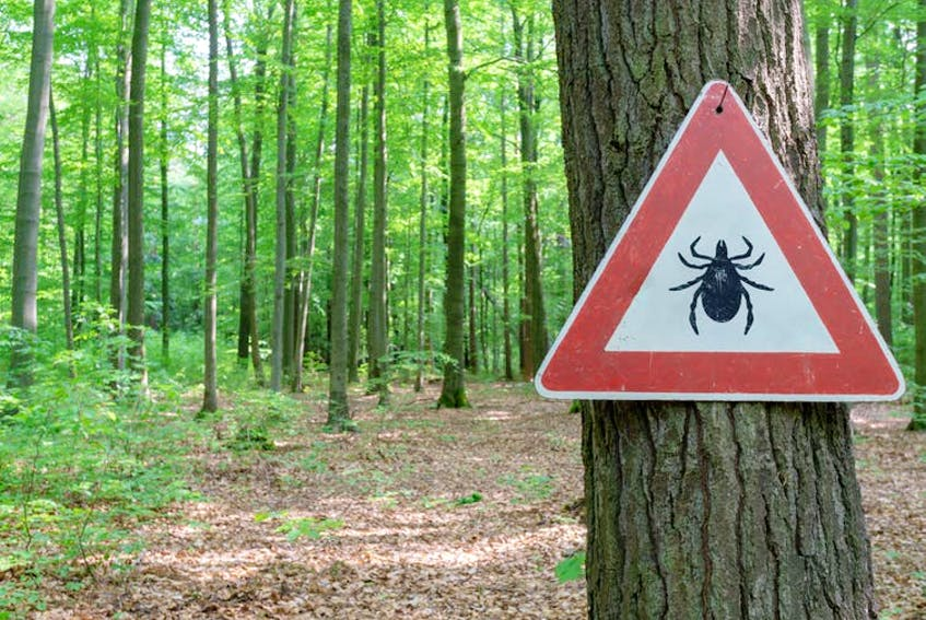 Nova Scotia has the largest tick populations in Canada and residents are either medium or high-risk for Lyme disease. - Shutterstock