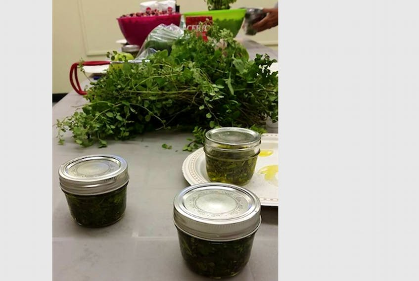 The Plant to Plate Community Garden group is offering a free workshop on Thursday, October 26 where participants will learn to preserve their harvest through freeze-drying and dehydration. Previous workshops have focused on preserving the harvest through canning and preserving herbs. - SUBMITTED