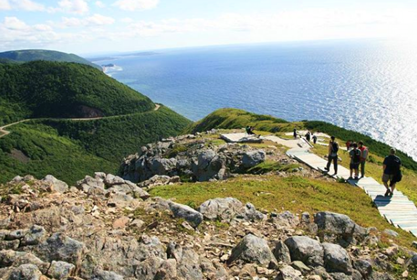 The Skyline Trail is now open after a recent closure due to aggressive moose behaviour.