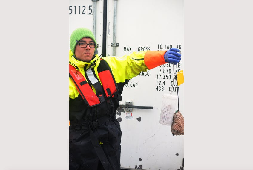 Tomas Araya-Schmidt, a student at Memorial University in St. John's, conducted the study in 2017 as his thesis. His research revealed that seal fat produced crab catch rates similar to squid bait.