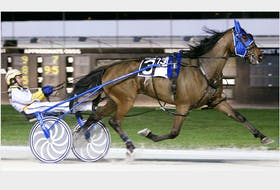 Waiting On A Woman wins a race at Pompano Park in Florida with Charlottetown native Wally Hennessey at the reins. Lap Time Photo/Special to The Guardian
