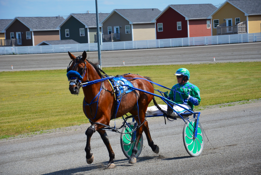Hes Marvalous and driver Myles Heffernan Sr. warm-up before the second Governor's Plate elimination at Red Shores at Summerside Raceway on Sunday afternoon. Hes Marvalous finished third and drew the rail for Saturday night's $25,000 final, presented by Summerside Chrysler Dodge.