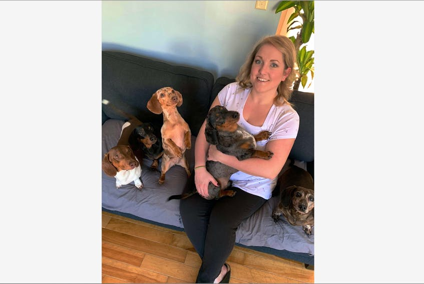 Nanalee Tait is the newest outreach co-ordinator at the Corner Brook Satellite Office, Gander Military Family Resource Centre. She is pictured here with her five dachshunds, from left, Axel, Luna, Evee, Otto and Casey.