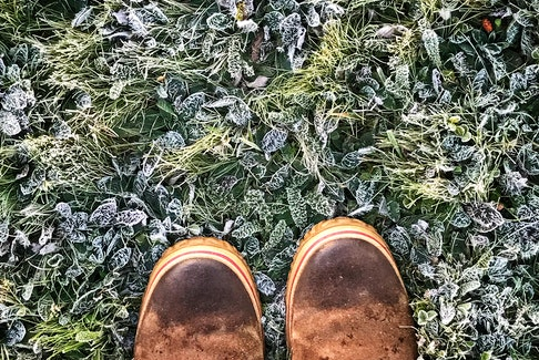 This photo was taken on September 23rd, 2 years ago.  Bernice MacDonald was out for a walk on a frosty Sunday morning in Antigonish, N.S. when she stumbled upon Nature's artwork.  The intricate frost patterns on the grass and leaves are nothing short of phenomenal.