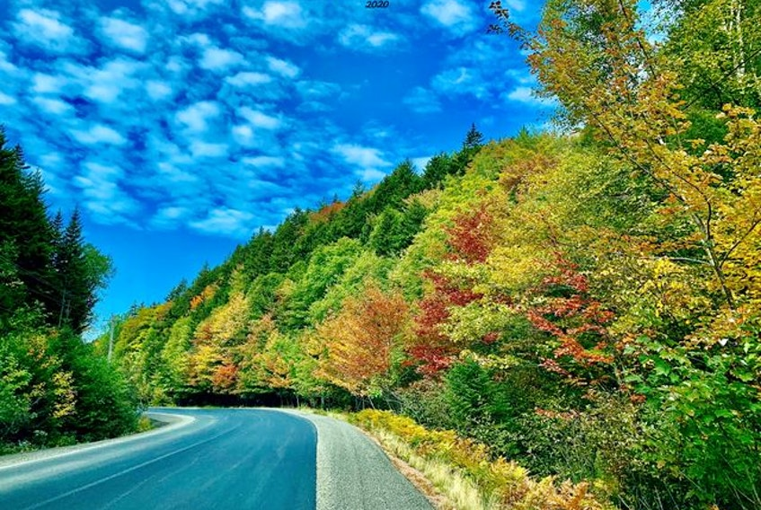 A blush of fall colours and a mackerel sky made Michael Winters stop and snap this lovely photo.  He was headed for Parrsboro early Saturday morning when he discovered this beautiful bend in the road in Moose River, Cumberland County, N.S. No word on the acorn count.