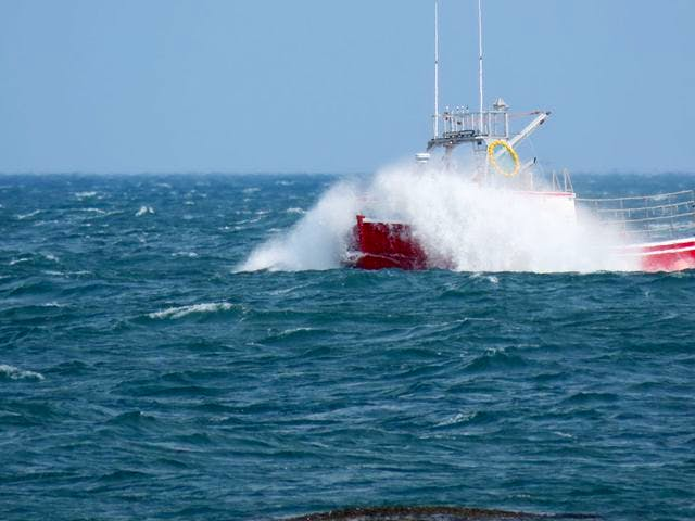 Starr Zwicker was on the wharf at Delaps Cove, N.S., when they snapped this photo of a lobster boat in a rough tide. Seeing this makes me so grateful that I am on dry land. Thank you for the photo, Starr.