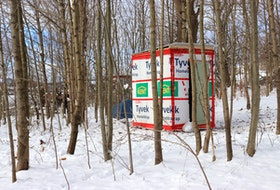 Two temporary shelters are seen in a thicket of trees in Dartmouth on Monday, Jan. 25, 2021. Halifax Mutual Aid built the shelters and set them up as part of what it calls a Band-Aid solution to the city's affordable housing crisis.
