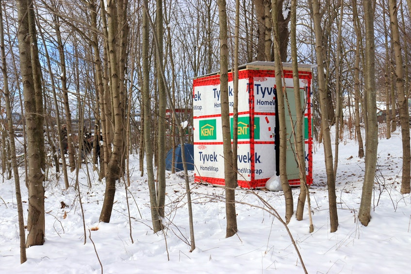 Two temporary shelters sit in a thicket of trees in Dartmouth on Monday, Jan. 25, 2021. Halifax Mutual Aid built the shelters and set them up as part of what it calls a Band-Aid solution to the city's affordable housing crisis. - Noushin Ziafati