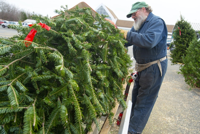 Neil MacMillan bales a tree at a treelot in the Atlantic Superstore parking lot in Upper Tantallon on Monday, December 7, 2020. MacMillan says there isn't a shortage of Christmas trees, however people are buying trees earlier than usual.