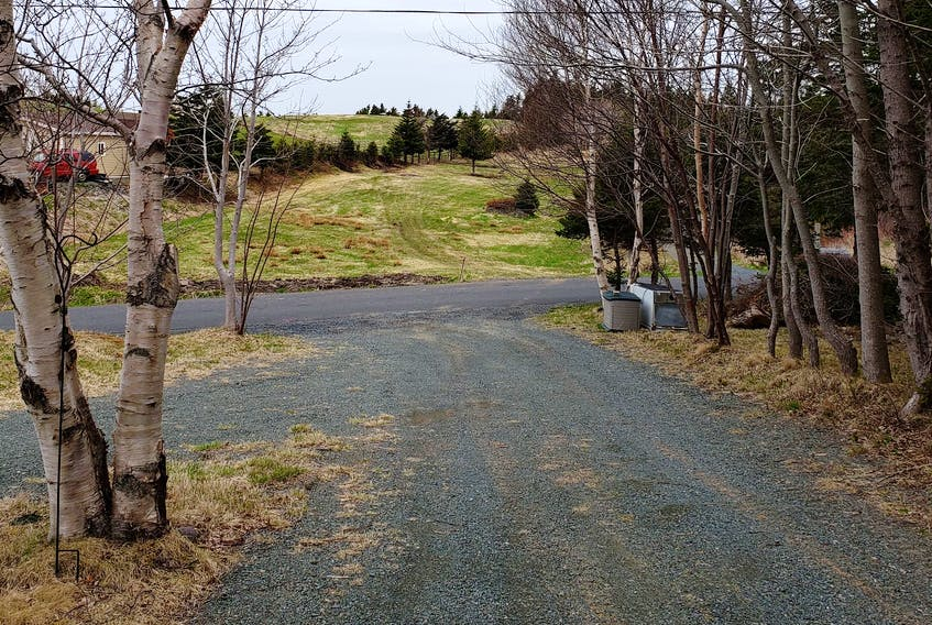 Paul Furey's driveway looking across to the meadow in Chapel's Cove where his neighbour caught on fire this week.