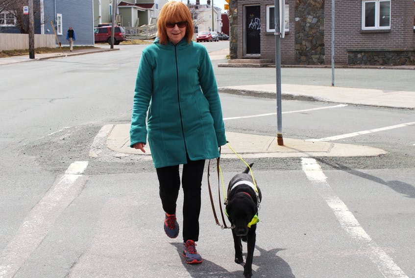 Anne Malone and her companion and guide dog, Cheryl, a Labrador retriever, take a walk along Merrymeeting Road in St. John's Tuesday afternoon.