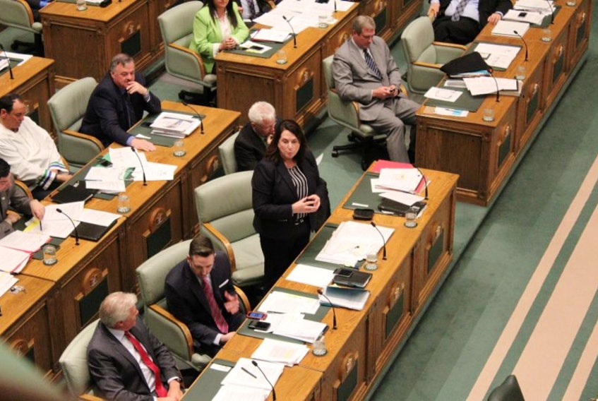 Natural Resources Minister Siobhan Coady speaks in the House of Assembly.