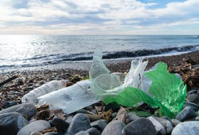 Look on any beach you like pretty much anywhere around Atlantic Canada and what will you find? Trash. — Stock photo