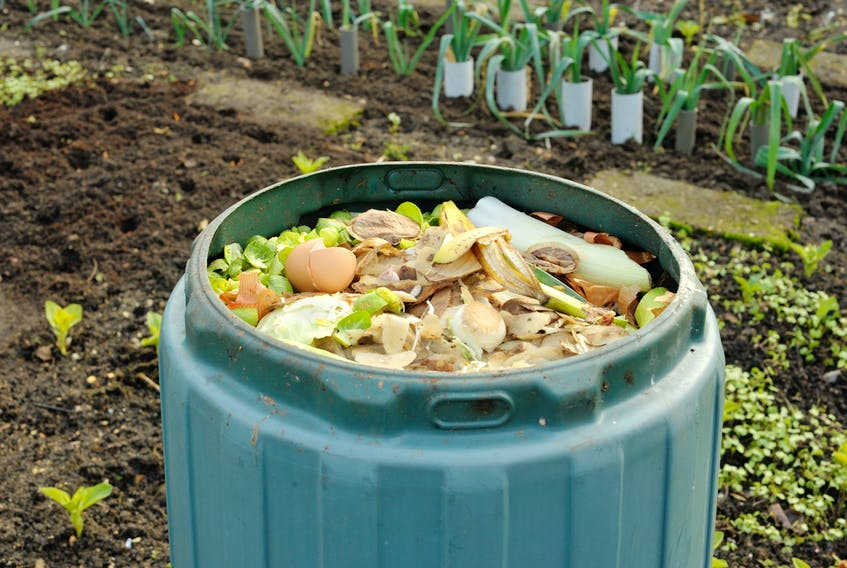 The City of St. John's, in partnership with the MMSB and the MUN Botanical Garden, offers free backyard composting information sessions to residents of St. John's. This approximately one-hour session Tuesday at 12 p.m. is at the MUN Botanical Garden. These sessions are for St. John's residents only.