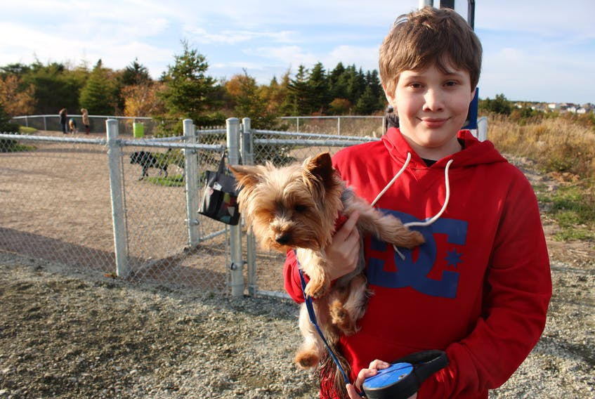 Lucas Flynn holds his dog, Lloyd. Lucas won the City of St. John's contest to name a new dog park in Airport Heights. He was inspired by research on family ties to the First World War, and the image of the Newfoundland dog Sable Chief.