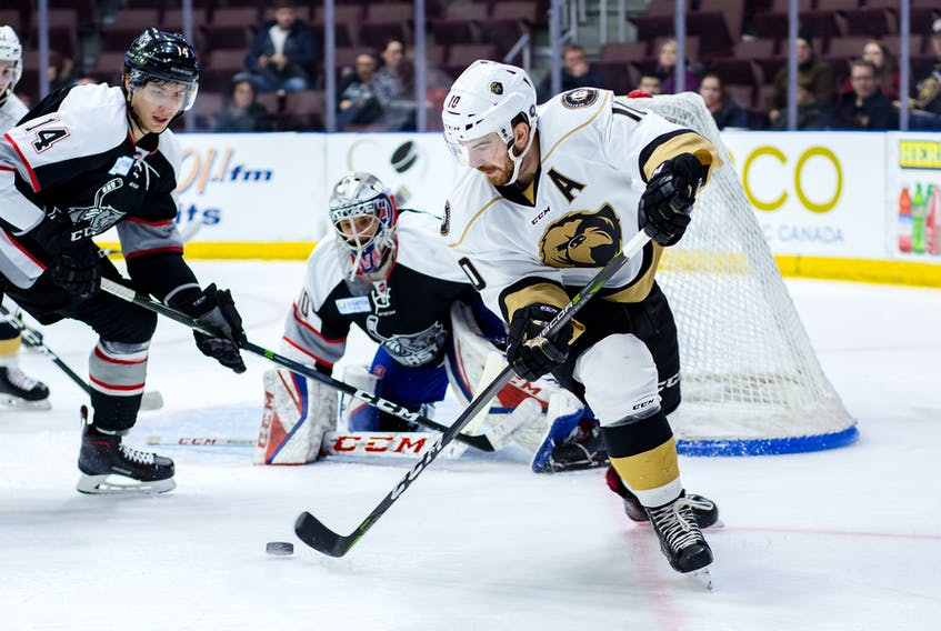 Zach O'Brien (10), the leading scorer and MVP for the Newfoundland Growlers in 2019-19, as well as the most valuable player of the ECHL playoffs, has signed a new AHL contract to remain within the Toronto Maple Leafs' organization. — Newfoundland Growlers photo/Jeff Parsons